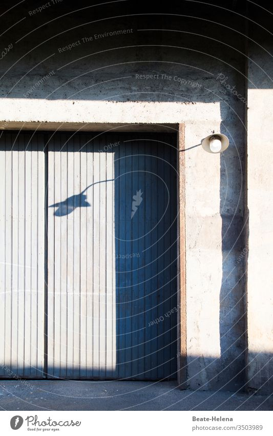 Shadow play: House wall, gate and lamp cast shadows and change their shape Light Light (Natural Phenomenon) house wall Goal Lamp Deserted Contrast Exterior shot