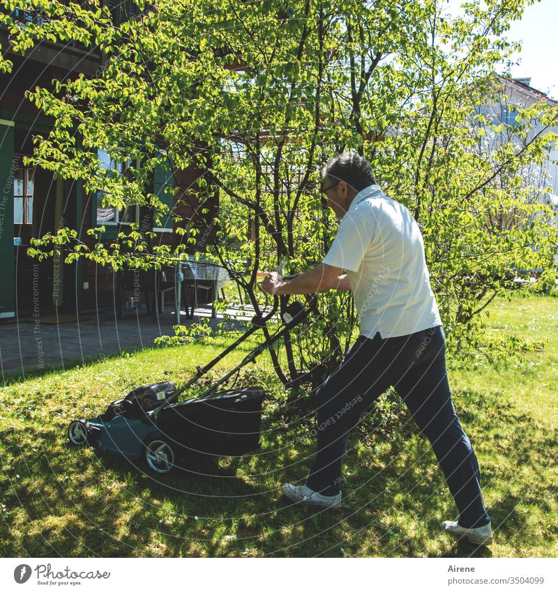 When men race the mower Lawnmower Garden Meadow lawn Gardening Garden tool Athletic Summer Spring Green Nature Growth neat work Stress free time Household