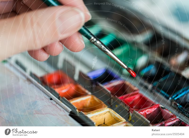 Hand holds brush over watercolor and takes up red paint Watercolors by hand Colour Mix Art Artist pallet close up Paint mix Painting (action, artwork) Red green