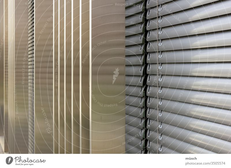 Venetian blind Window Refusal Metal Gray lines blackout structure Decoration obstacle Looking sight Protection Architecture perpendicular Across roller shutter
