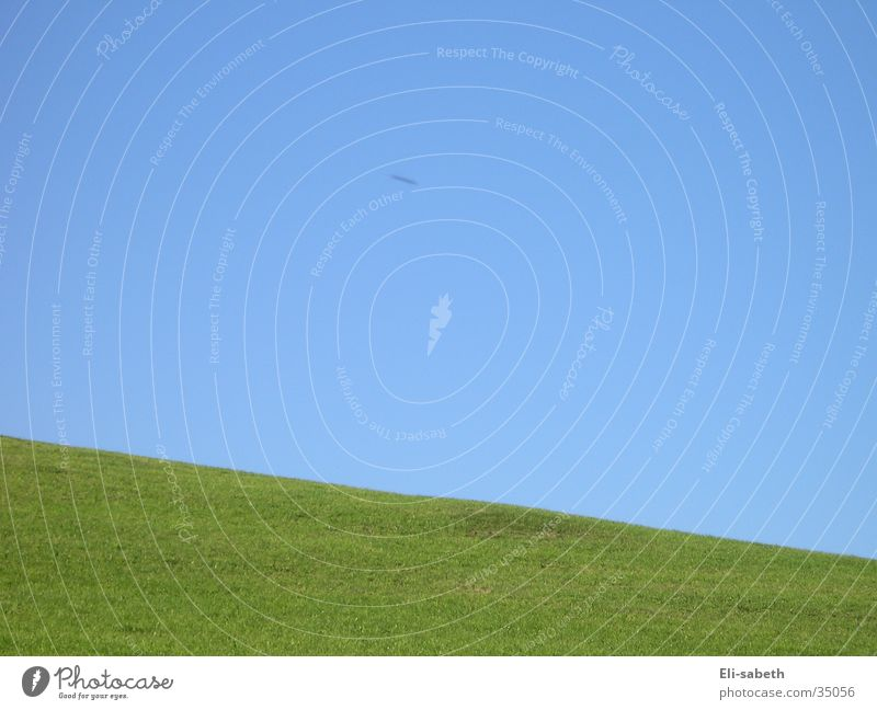 Sky Green Blue Meadow Grass Mountain Crazy Alpine pasture