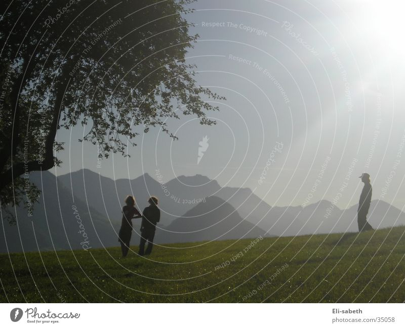 Play of light Tree Light Alpine pasture Meadow Group Sun Mountain Silhouette Human being Shadow