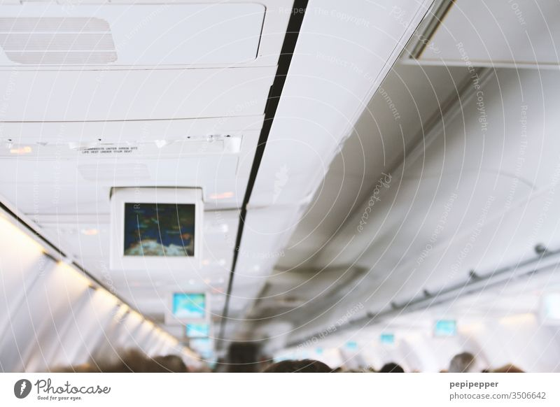 Aircraft cabin Airplane Aviation Sky Flying Vacation & Travel Colour photo Travel photography Tourism Blue White Interior shot air traffic In the plane