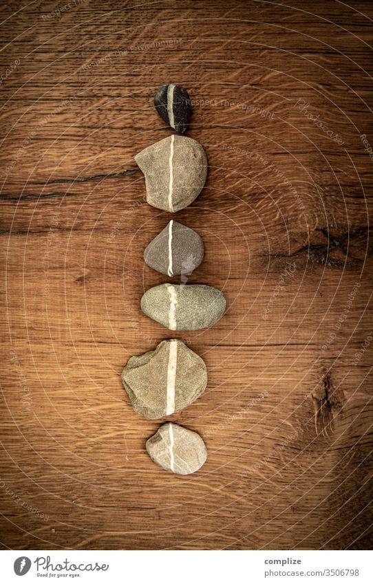 Lifeline | Line of stones lifeline Stone lines Direct Lanes & trails picture background Wood grain Oak tree vintage colours Geometry bar code dash Pebble