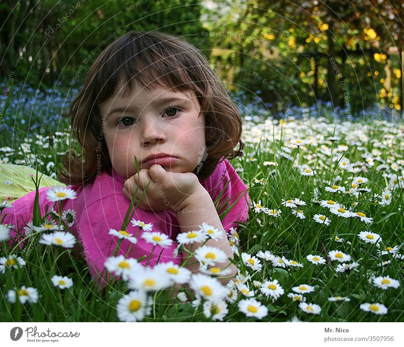 pout Ute Lie Child girl Meadow Garden ponder Sulk Dreamily Thought Rest on Facial expression rested Looking Flower meadow Daisy Cute Think Face portrait