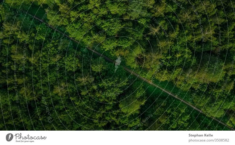 aerial veiw of empty road in green forest. drone shot. above diagonal natural background landscape way beautiful nature outdoor summer travel tree vertical