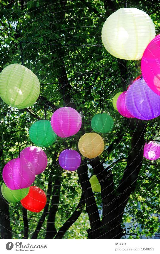 lantern Summer vacation Living or residing Garden Decoration Lamp Night life Party Beach bar Feasts & Celebrations Birthday Tree Illuminate Multicoloured
