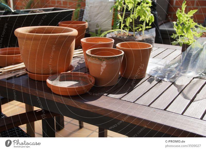 flowerpots repot plants Balcony terrace Garden Gardening Clay pot Terracotta Table