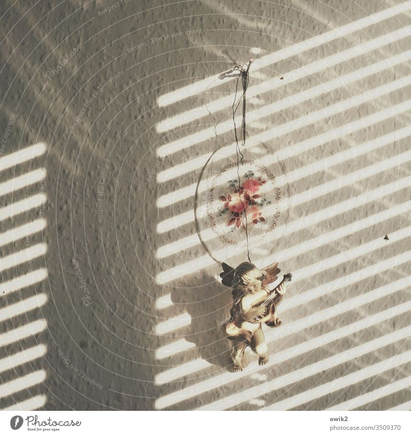 Angelic creatures Wall (building) Corner of the room decoration Window Sunlight slats obliquely Shaft of light Deserted Interior shot Colour photo Shadow Light