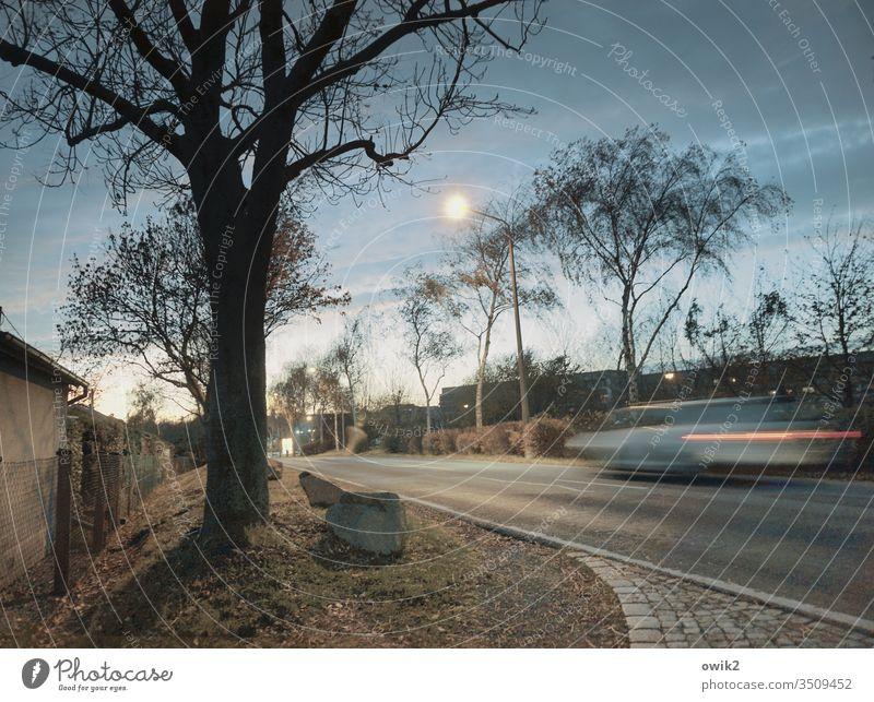 Racing cardboard Street Evening Moon moonlight Sky Clouds Roadside Transport Car Motion blur Driving swift Speed huts Asphalt Grass stones Cobbled pathway