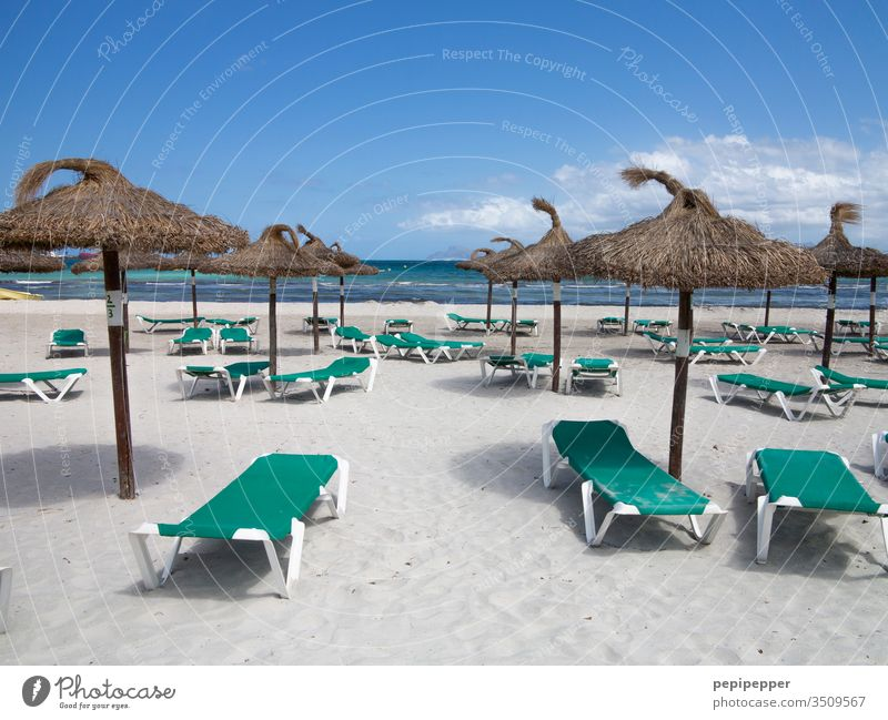 empty beach with green sun beds and brown parasols Sunshade sunshade stand Vacation & Travel Sun loungers Beach Ocean Summer Sky Sand Blue Exterior shot