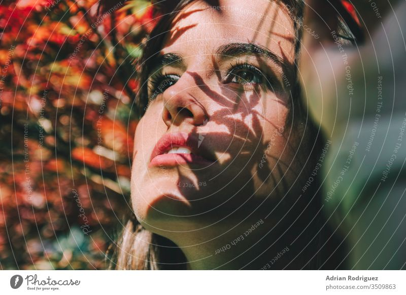 A young Mediterranean girl among the red leaves of the trees, with shadows of leaves falling on her model beautiful woman female beauty fashion portrait nature