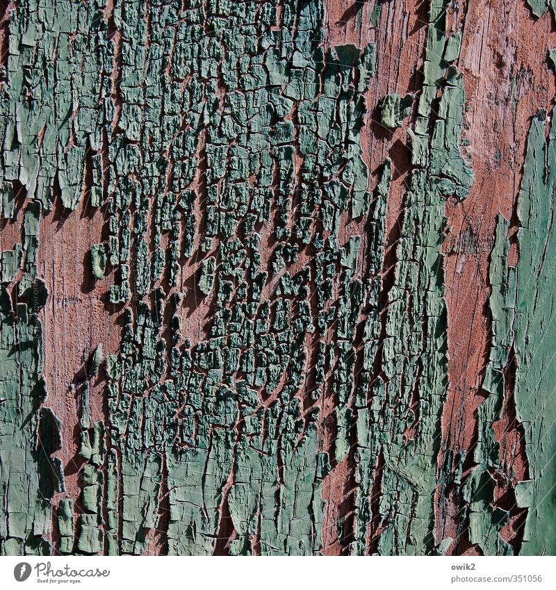 Old Dye Wood Small Pink Door Broken Transience Copy Space Tracks Part Near Decline Turquoise Crack & Rip & Tear Trashy