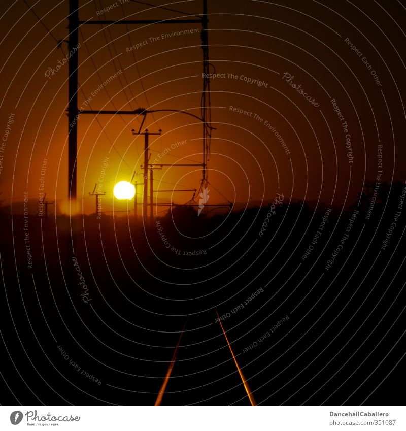 Beautiful Sun Black Yellow Far-off places Warmth Moody Orange Gold Transport Energy Future Electricity Railroad Logistics Railroad tracks