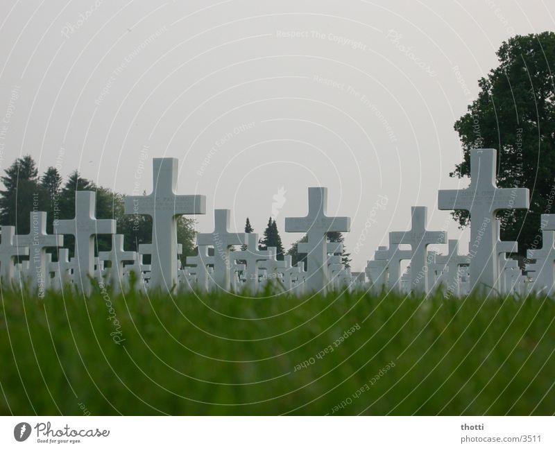Individual destiny? War Cemetery Grave Remember Soldier Historic Back Death