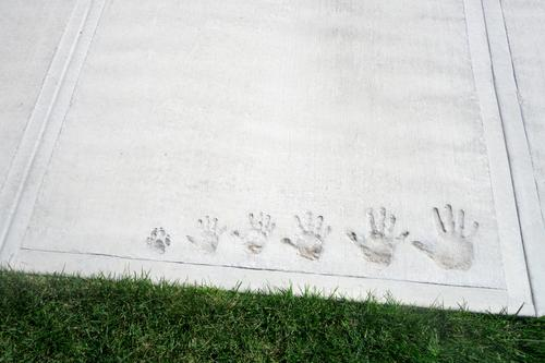 family moment captured in concrete with hand imprints on cement sidewalk going from small to big and includes famly dog's paw print funny cement imprint