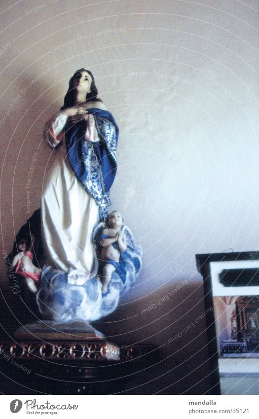 Madonna Religion and faith Catholicism Prayer Looking Interior shot Virgin Mary Leisure and hobbies Upward