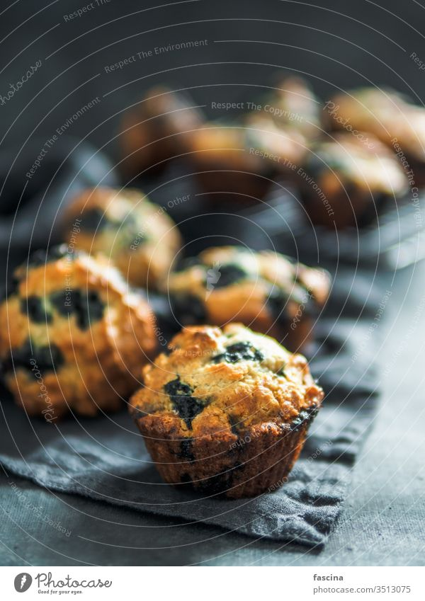 Homemade blueberry muffins on dark background. low calories homemade blueberries muffins nobody top view above vertical food dessert cake snack sweet pastry