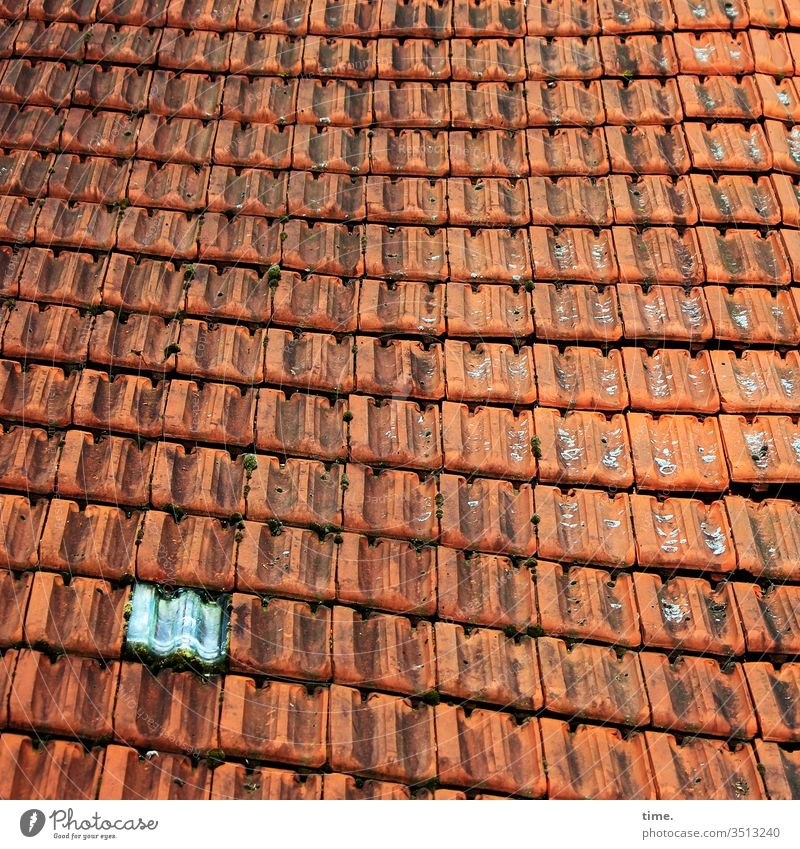 ray of hope out Roof built Inspiration Partially visible Red Architecture Roofing tile roof tiles Glass block Pattern structure Undulating wavy craftsmanship