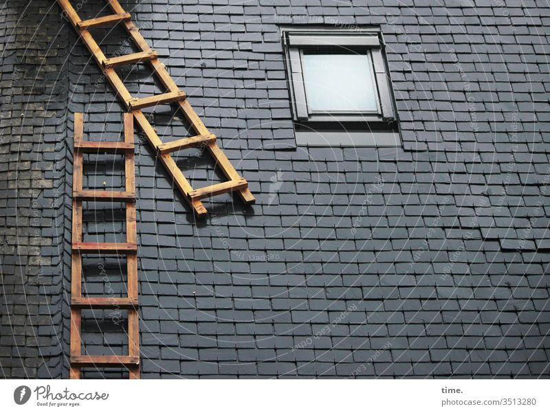 to get up on someone's roof   literally House (Residential Structure) Above Ladder outer conductor Window Perspective detail Construction Architecture