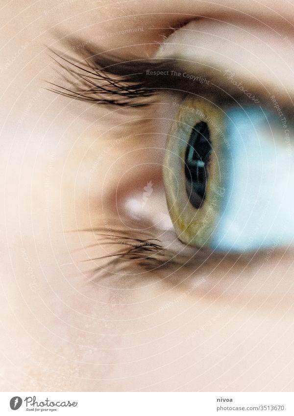 Boys Eye Boy (child) childhood Eyes eye eyelashes Green Blue eyes Colour photo Looking Skin Detail Makro Sensitive sensitive skin watchful Looking away Face