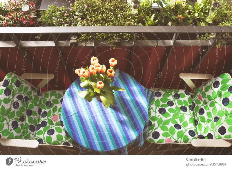 Small colourful balcony with table and chairs in bird's eye view Balcony Flower vase Bird's-eye view flowers Corkscrew Summer Sun Table tulips spring Bouquet