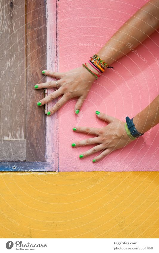 shake on it Hand Women`s hand Colour Dye Multicoloured Pink Yellow Brown Green Contrast Card Thailand Krabi Wall (building) Arm Parts of body Colour photo