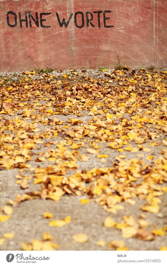 Letters, text, lettering: without words, are written on a pink wall of concrete, in the foreground are yellow leaves in autumn, on the floor. Autumn speechless