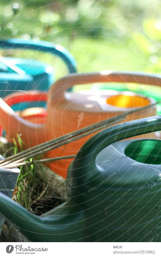 Many colourful plastic watering cans, standing decorative and ready to hand, ready for watering, outside in the green meadow at home in the garden, in spring, summer. Illuminated by the sunlight, the beautiful weather, the cutout is beautiful and decorative.