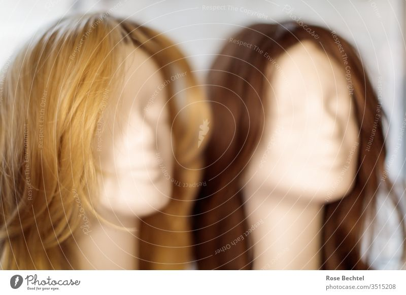 Two wigs Hair colour Hair and hairstyles long hairs Wig wig head Blonde Brown brunette Selection two Fashion