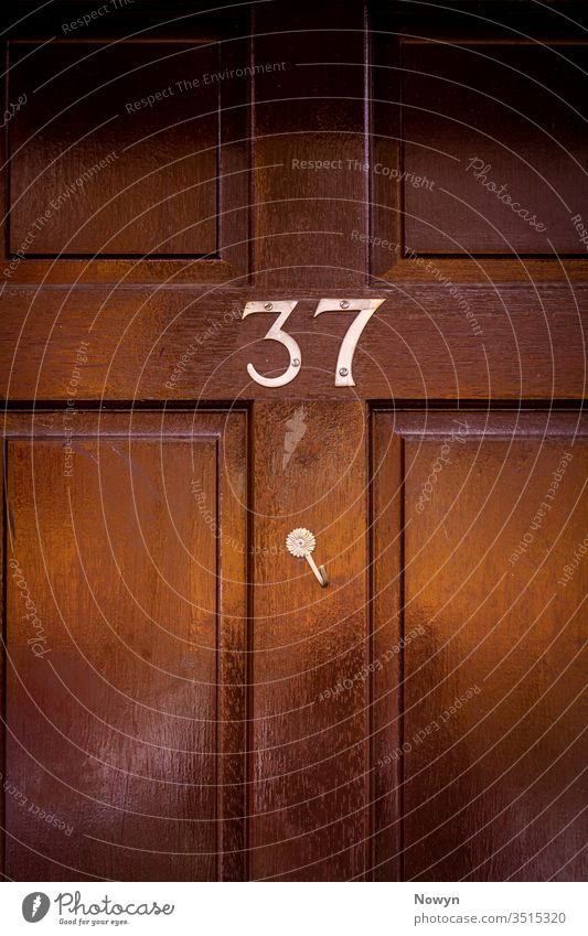 House number 37 on a dark wooden front door with crooked hook 37 number address black britain classic classy close up closeup decoration design detail digit