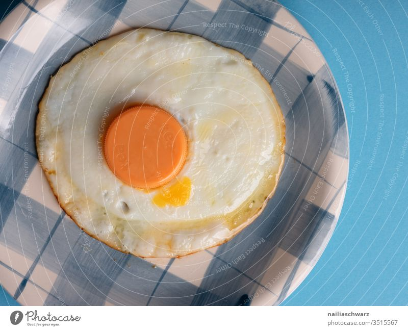 Fried egg with plastic lid Fried egg sunny-side up Plate Blue peek not real Food Nutrition Breakfast Colour photo Deserted Appetite Healthy Crockery Day