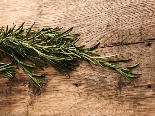 Organic rosemary on rustic wood above aroma aromatherapy aromatic background board branch bunch closeup cooking cuisine culinary dill evergreen flavor food