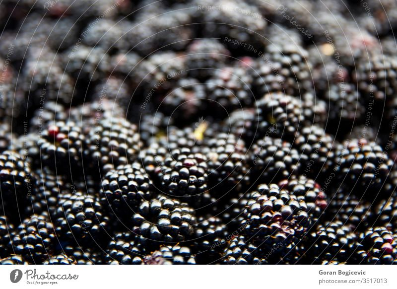 Ripe juicy wild fruit raw blackberries lying on the table blackberry ripe background food healthy macro closeup fresh group freshness delicious vegetarian