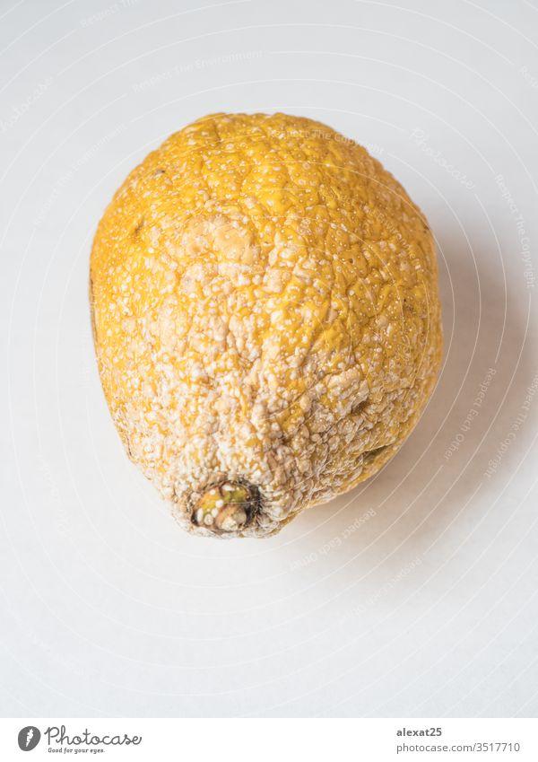 Rotten lemon on white background bad citrus closeup decay eat eco food fruit fungal fungi fungus isolated mold moldy natural perishable putrid rot rotten