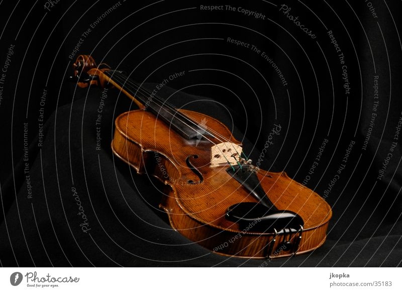 Violin Elegant Style Event Music Artist Culture Concert Musician Orchestra Playing Old Brown Black Classical Musical instrument Colour photo Interior shot