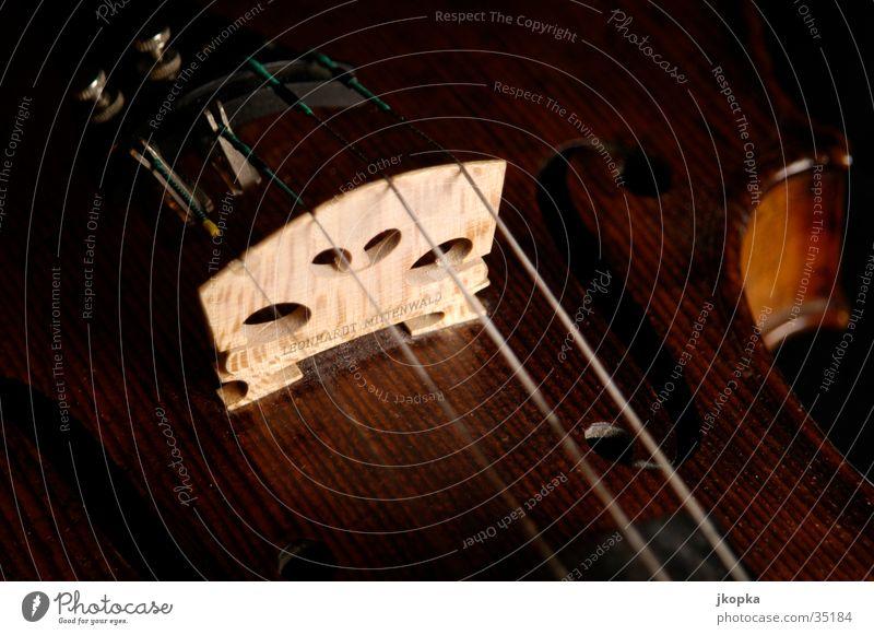 Violin detail 2 Music Concert Orchestra Musical instrument Elegant Brown Black Classical Studio shot Detail Macro (Extreme close-up) Deserted Shadow Low-key