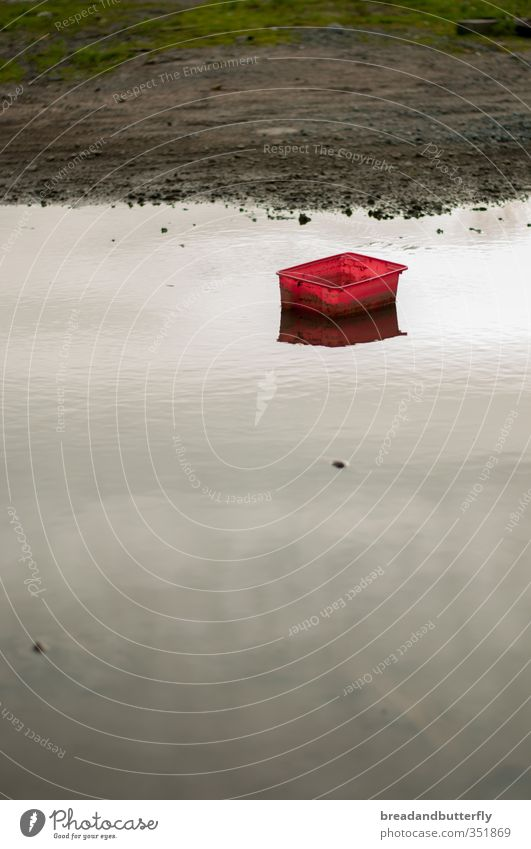 Water Red Calm Swimming & Bathing Wet Elements Plastic Box Puddle Bad weather