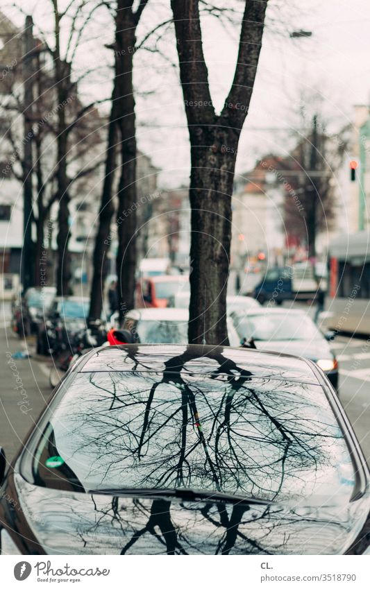 car and tree Reflection Slice Window pane Glass Colour photo Pane Traffic infrastructure Means of transport Transport Parking Parking lot Town Lanes & trails