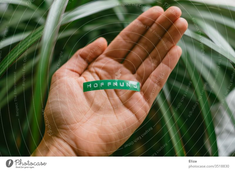 A person holds a green sign with hope in his hand Hope Climate nature conservation by hand stop Word Text Letters (alphabet) writing Label