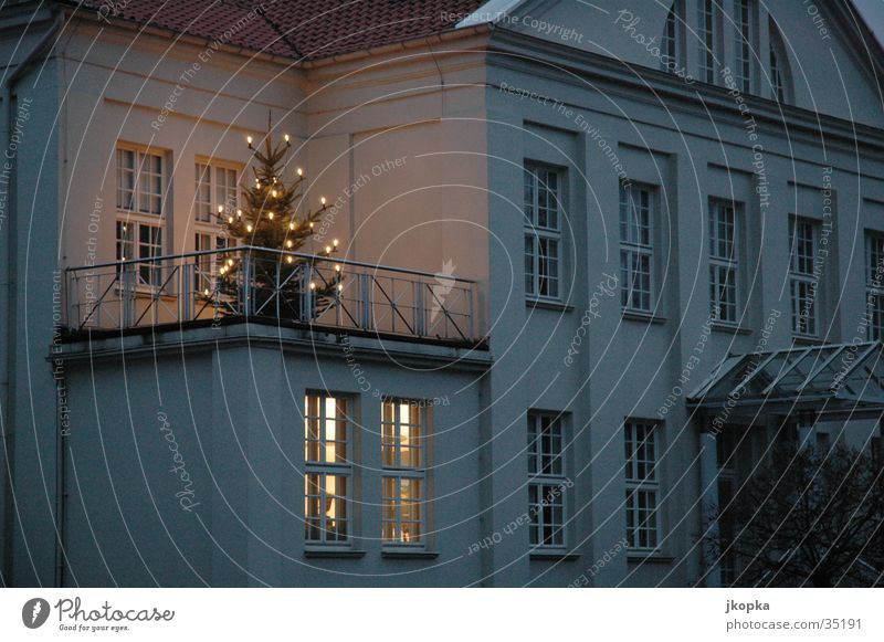oh fir tree Building Fairy lights Obscure Christmas & Advent Fir tree Lamp