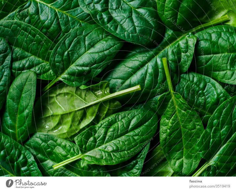 Pattern from baby spinach pattern frame flat lay fresh green leaves top view background healthy leaf plant vegetable food diet freshness keto ingredient organic