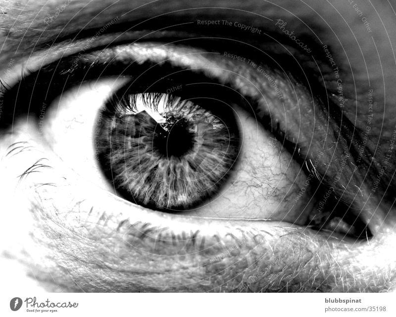 Anja's eye Pupil Woman Eyes Detail Macro (Extreme close-up) Black & white photo Iris Looking into the camera Eyelash Women's eyes