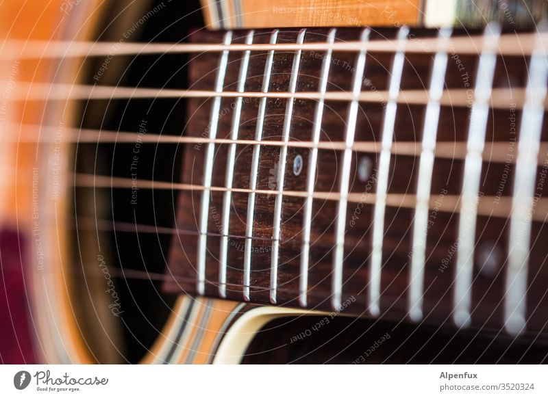 Device for | triad Guitar Music Musical instrument string Macro (Extreme close-up) String instrument Close-up Acoustic Sound Make music Shallow depth of field
