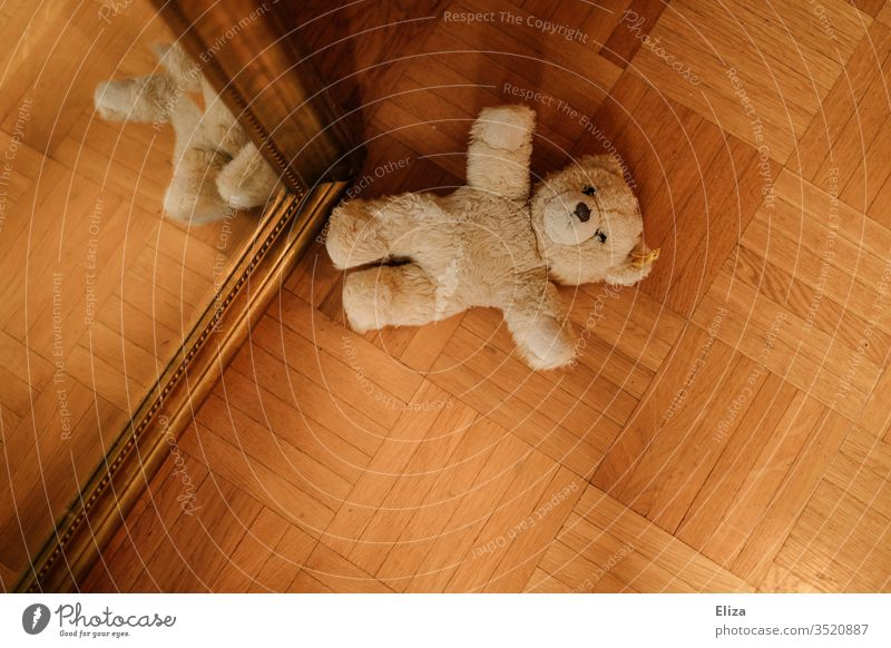 A teddy bear lying on the ground Teddy bear Infancy Ground Forget left Toys cuddly toy Shackled Playing Bear Brown Loneliness by oneself Plush Doomed Lonely