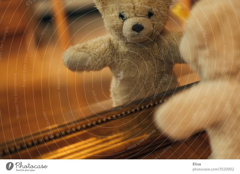 A teddy bear looking at his reflection in the mirror Teddy bear Mirror image Infancy Ground Toys cuddly toy Shackled Playing Bear Brown Loneliness by oneself