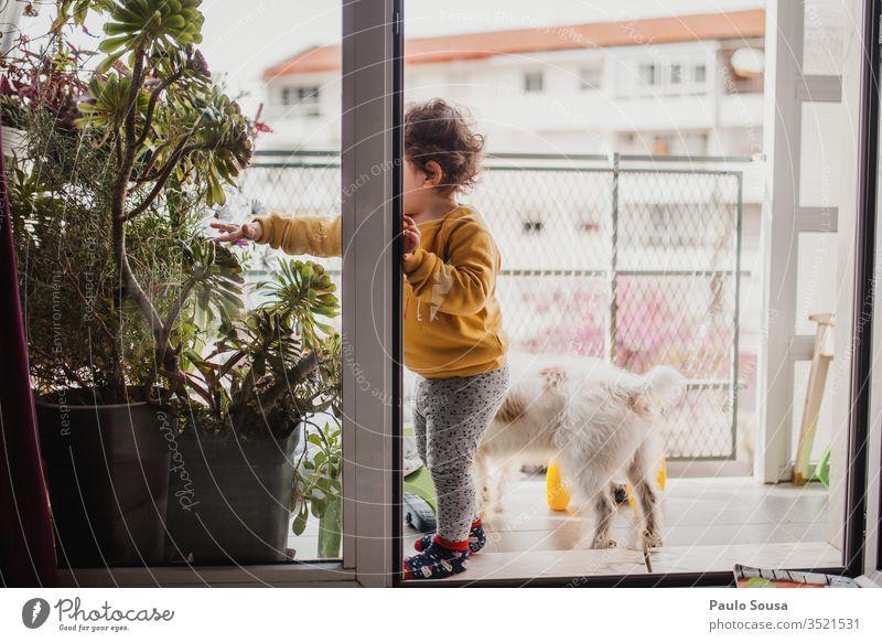 Child and dog on balcony confinement Quarantine Quarantine period sars covid-19 coronavirus Pet Dog Together togetherness Protection Balcony Balcony plant Home