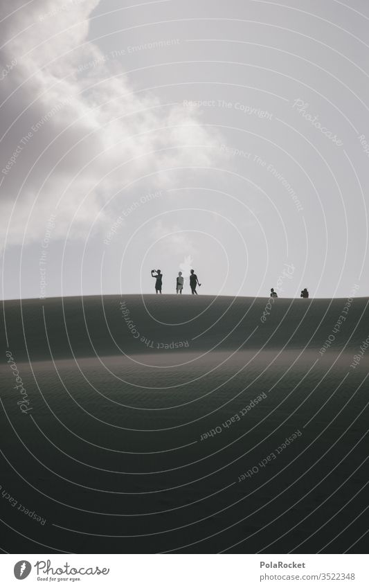 #As# hold it tight New Zealand New Zealand Landscape Tourism travel Travel photography voyager destination dune dunes dune landscape Dune crest Discover