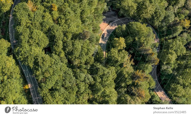 Curving road through a green forest photographed from above with a drone. Street Forest aerial Aerial photograph Bird's-eye view Nature Summer Day Landscape