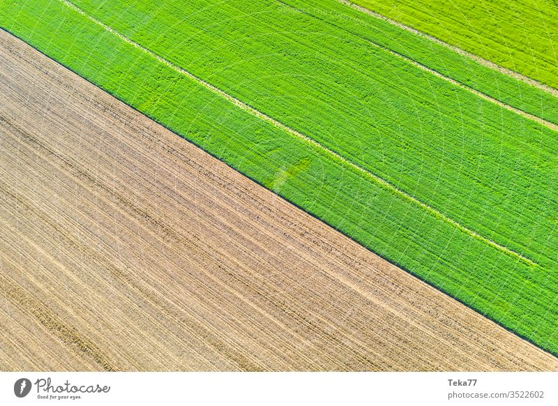 an agricultural landscape texture from above agricultural way tractor tractor path field background meadow background air aerial view aerial photo grass farm
